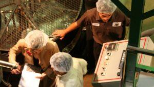 Employees managing roasting machine
