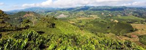 Costa Rica coffee farm landscape with hills and blue skies
